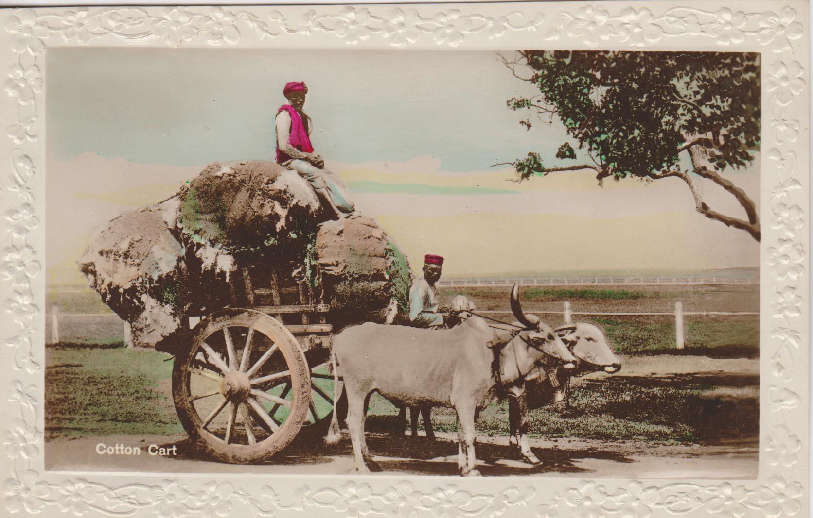 Antique postcard of a cotton cart
