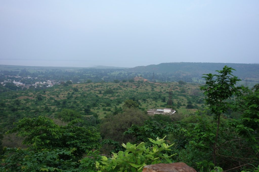 The buildings nestled in the trees are the Tana Bana Hotel, just 2 km from the centre of Chanderi